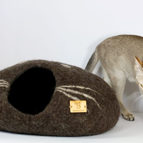 kokon-dla-kota-singapurski kot