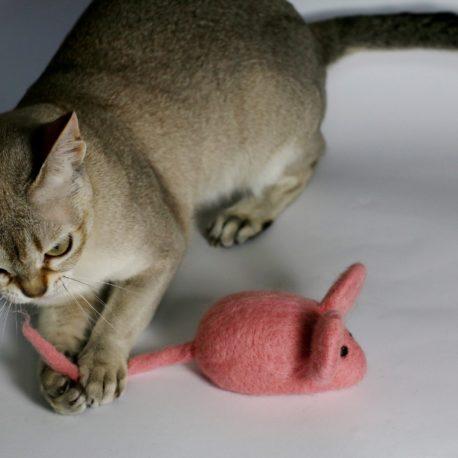 SingaLove-najlepsze-zabawki-dla-kota