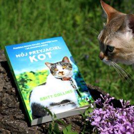 mój przyjaciel kot Britt Collins recenzja SingaLove