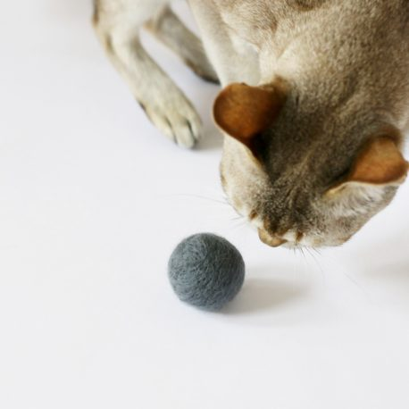 piłka dla kota kulka kocia zabawka SingaLove