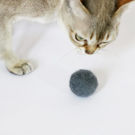zabawki-dla-kotow-pilka-kulka-SingaLove